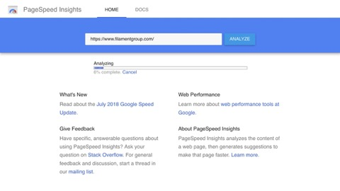 Pagespeed insights screenshot of filament group's 100 score